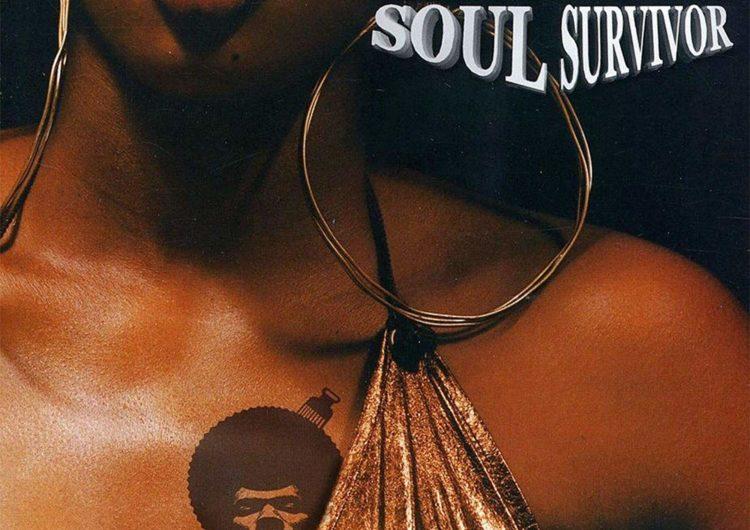 Pete Rock – Soul Survivor